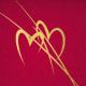 Crvena 2 srca