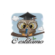 Kvadrat - diploma sova